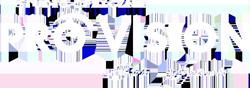 Optyk PRO VISION logo